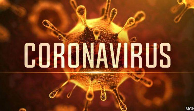 ویروس کرونا چیست
