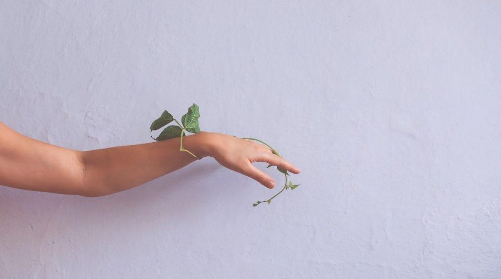 زیبایی دست ها