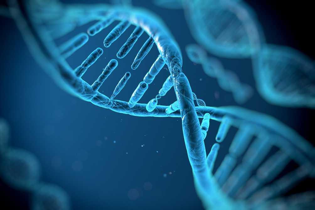 مشکلات ژنتیکی